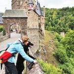Blick von der Steinbrücke auf den Elzbach
