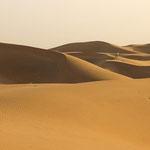 Wüste Thar - Indien
