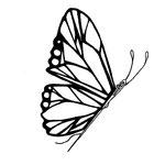 Schmetterling (eigenes Logo)