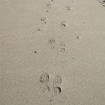 Empreintes de pas de bipèdes grémarcannistes sur la plage de...