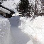 Definitiv genügend Schnee