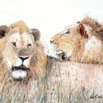 """Könige der Steppe"" -  70 x 60 cm - Öl auf Leinwand"