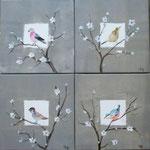 Oiseaux des jardins 4x30x30