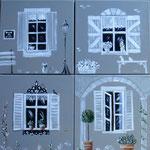 fenêtres 4x30x30
