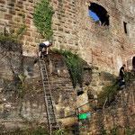 Travaux de nettoyage ( Chtx du Birkenfels)