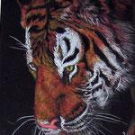 мой любимый Тигр, пастель