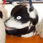 Eine Maske der Doncari
