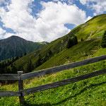 alm landscape in tyrol