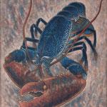 Homard bleu   65×54cm l'huile sur toile 2016