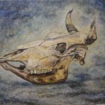 静物 Nature morte   60.6×72.7cm カンバスに油彩  l'huile sur toile   1998