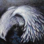 鳥 Oiseau   60.6×72.7cm カンバスに油彩  l'huile sur toile   2000