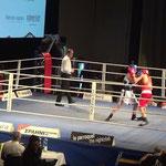 Box-Ring Zürichsee/Horgen mit seinem Boxer Hamzat