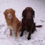 Januar 2014 Bo und Finno