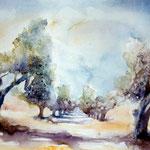 """Allée des oliviers"" Format 40 x 50"