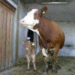 Moritz et sa maman