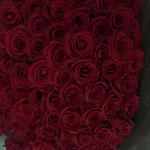 赤いバラ100本の花束。50,000円税別。