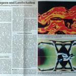 Rhein-Neckar-Zeitung Nr. 60, März 2003