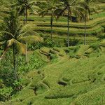 Bali by Volker Abt