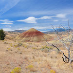Painted Hills, Oregon by Volker Abt