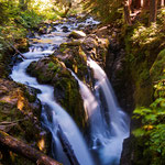 Olympic National Park, Washington State by Volker Abt