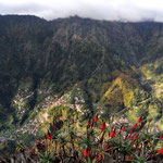 Madeira by Volker Abt