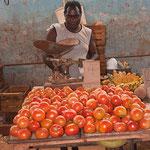 Tomato Salesman, Havana