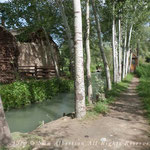 Mulberry Paper Mill Uzbekistan