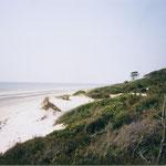 Der weite Strand von Jekyll Island