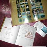 2003 | макет  буклета