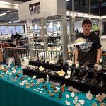 Hannes Casutt an der Mineralienmesse Luzern