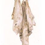 Celles que l'on ne montre pas II - juin14 - huile sur toile, 70 x 100 cm
