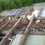 on découvre des débris divers, d'anciens nids d'oiseaux et de guèpes, des branchages en tout genre...