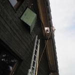 percage du trou dans le toit