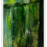 Chile, kalter Regenwald, Aquarell 40x60 cm