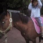 Braves Pony! Geronimo beweist seine Qualitäten als Kinderpony und bleibt absolut cool. Auch Bewegungen auf seinem Rücken stören ihn nicht.