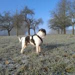 Tatsächlich weiß und kalt und blauer Himmel :-)