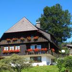 Schönstes Wetter, ab in den nahen Schwarzwald...