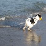 Spielen im Wasser...