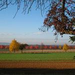 So schön ist also der Herbst...