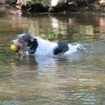 Man kann noch schwimmen gehen, oder besser spielen im Wasser