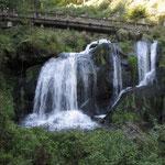 Natürlich auch zu den Triberger Wasserfällen