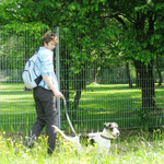 In der Hundeschule - Leinentraining