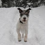 Jippiieeeh auf geht´s in den Schnee