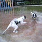 Jara zeigt mir wie man schwimmt, aber ich weiß nicht recht...Nee...