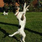 Und wie sie tanzen kann!