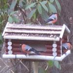 ...und Vogelhaus