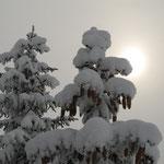 und in wirklich dicken, tiefen Schnee