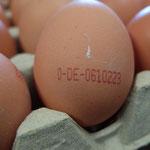Jedes Bioland-Ei ist durch seinen Stempel dem Erzeugerbetrieb eindeutig zuzuordnen.