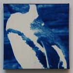 鳥鋼 -type01- / 2013 ED.5 S0号(180×180mm) cyanotype 紙 木製パネル