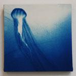 鉢虫鋼 -type01- / 2013 ED.5 S0号(180×180mm) cyanotype 紙 木製パネル ★